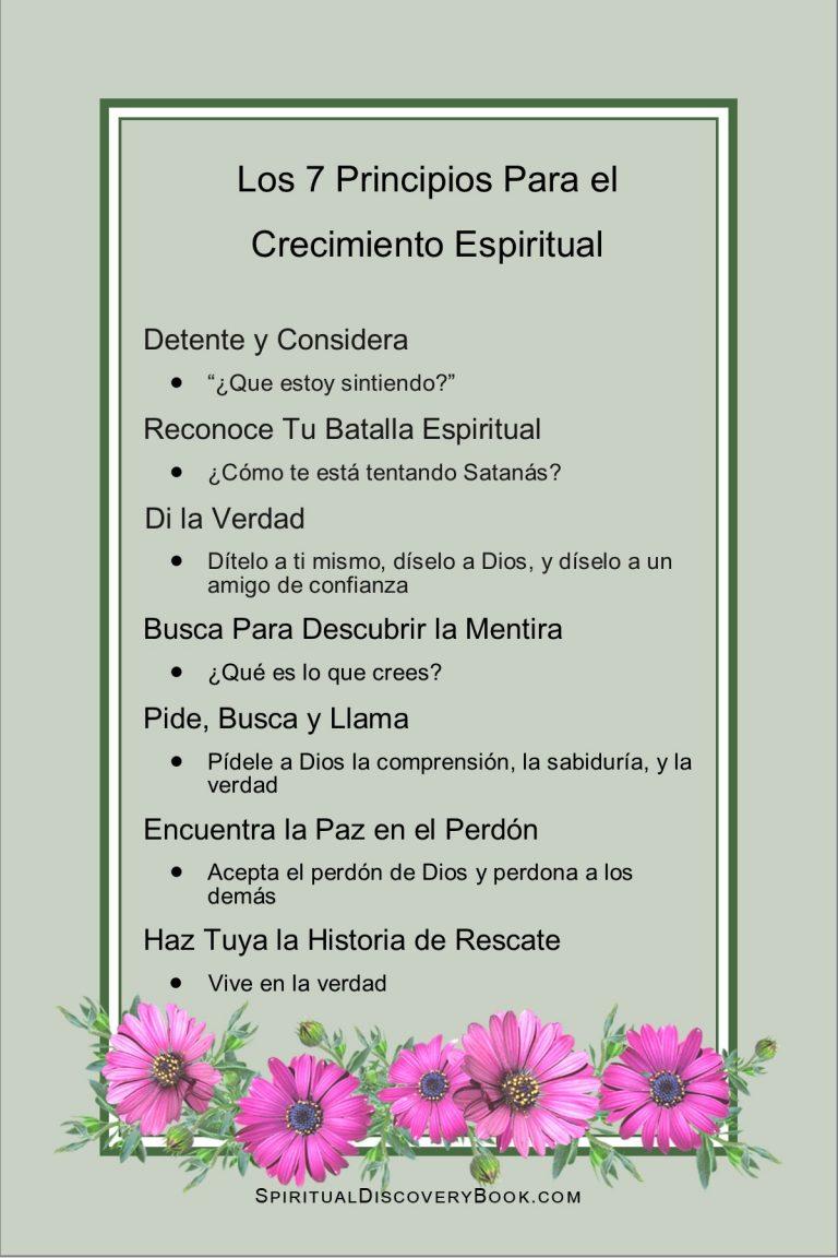 Spanish 7 Principles 4x6 flower box green