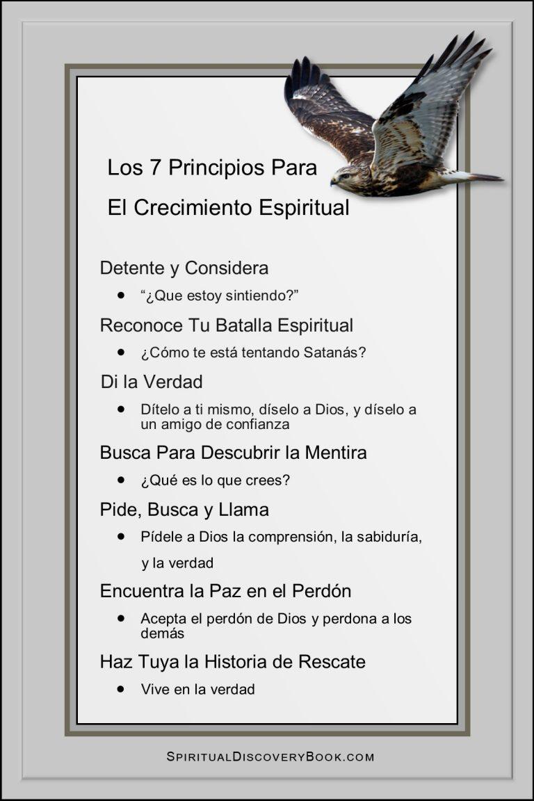 Spanish 7 Principles 4x6 hawk on grey