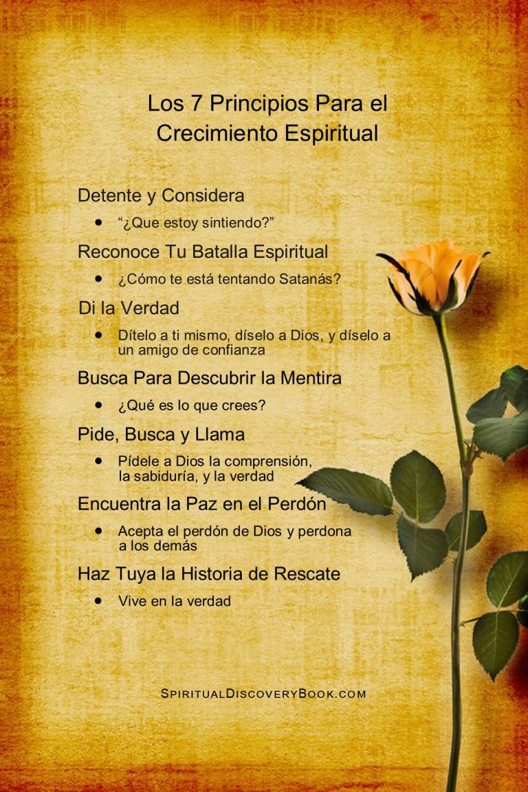 Spanish 7 Principles 4x6 orange rose